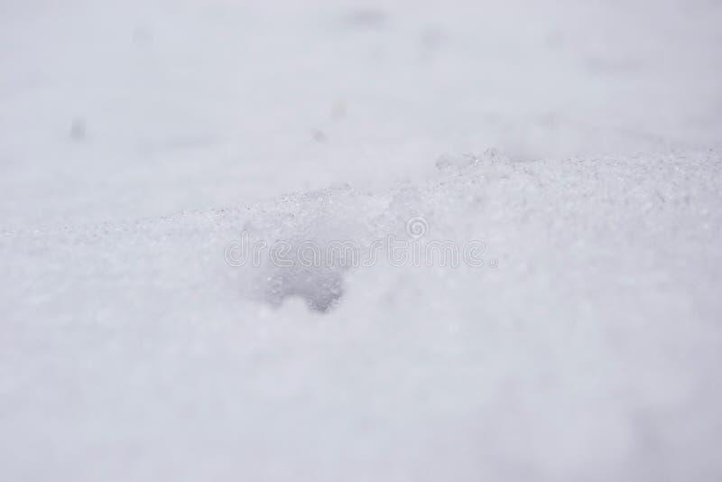 Sneeuwkristallen - sluit omhoog van een druk in een diep sneeuwtapijt stock fotografie