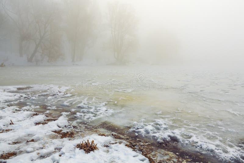 Sneeuwkust van het meer in de mist stock foto