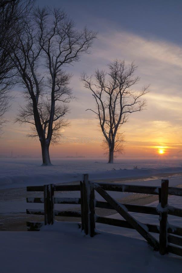 Sneeuwlandschap in Alblasserwaard royalty-vrije stock afbeelding