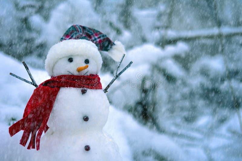 Sneeuwman op de achtergrond van een de winterlandschap stock afbeelding