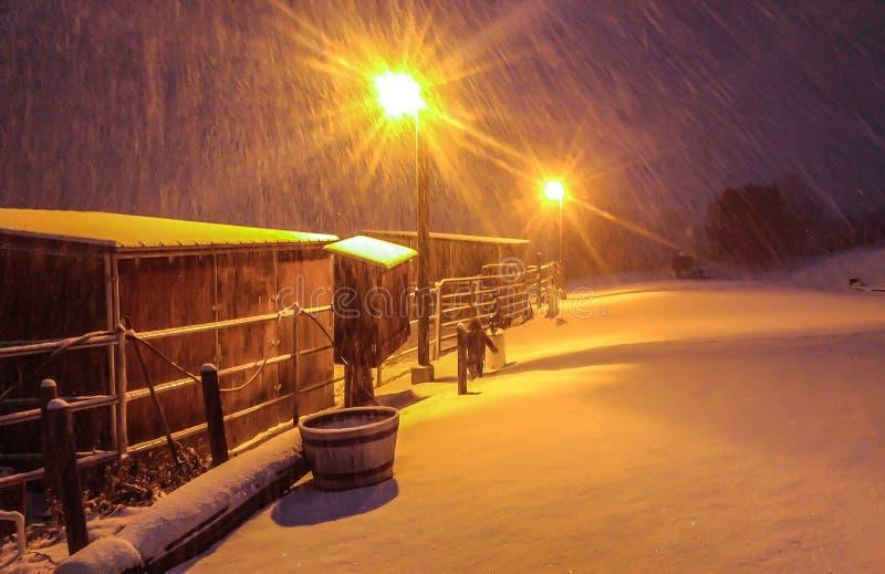 Sneeuwnacht stock foto's