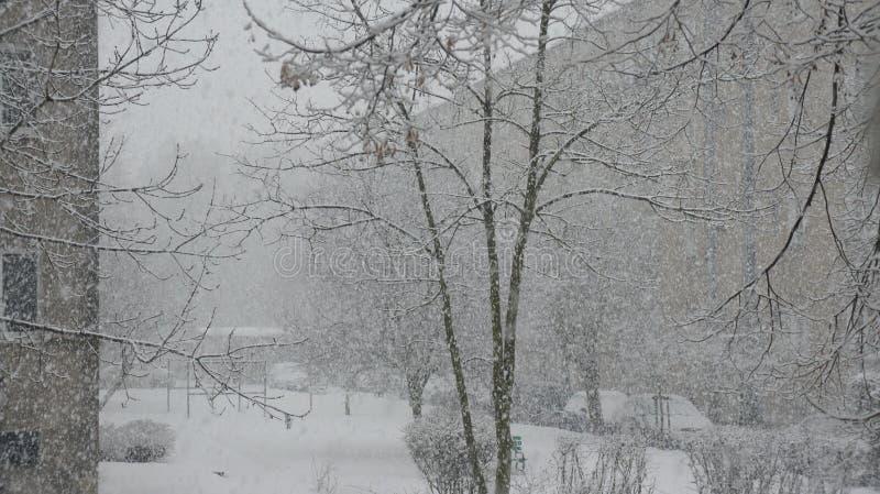 Sneeuwonweer royalty-vrije stock afbeelding