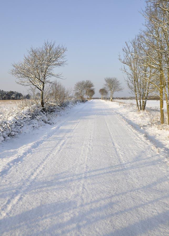 Sneeuwplattelandsweg en bomen stock afbeeldingen