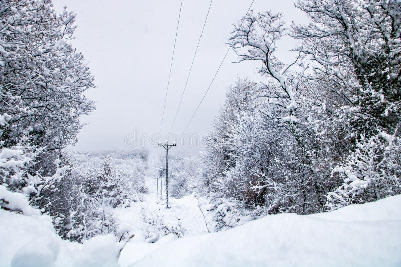 Sneeuwreis royalty-vrije stock foto's