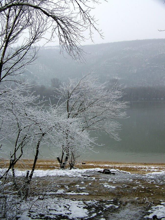 Sneeuwrivieroever van Duna-rivier Hongarije royalty-vrije stock foto's