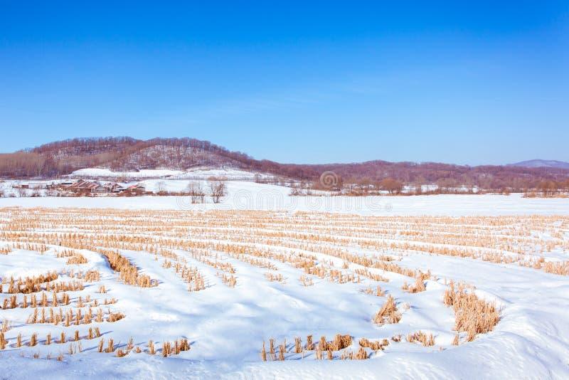 Sneeuwscène in bergdorp stock foto's
