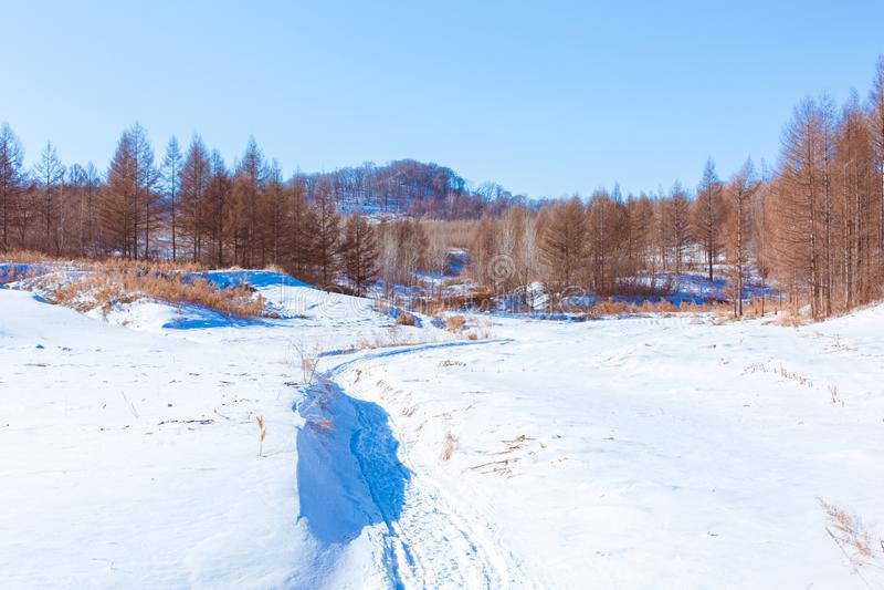 Sneeuwscène in bergdorp royalty-vrije stock foto's