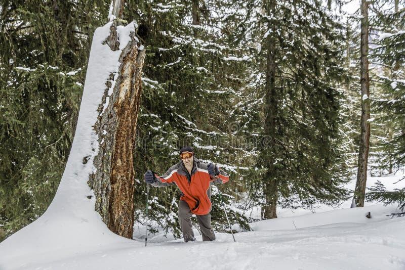Sneeuwschoen die in het bos lopen royalty-vrije stock foto's