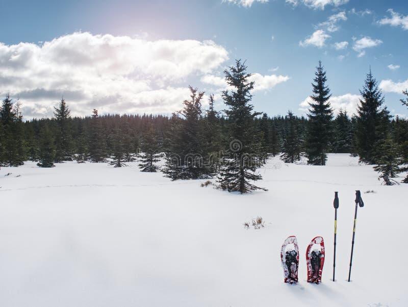 Sneeuwschoenen voor binnen het lopen op zachte sneeuw De Activiteitenconcept van de de wintersport stock afbeelding