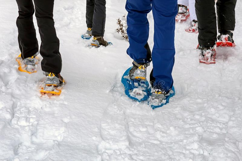 Sneeuwschoenstijging op de sneeuwbergweg Gang op de verse sneeuw royalty-vrije stock foto