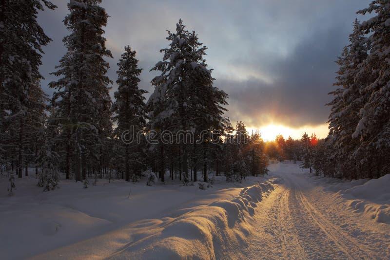 Sneeuwscootersleep bij zonsondergang, Lapland in Finland royalty-vrije stock foto's