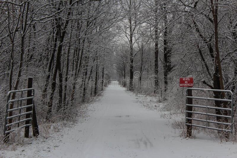Sneeuwsleep stock afbeelding
