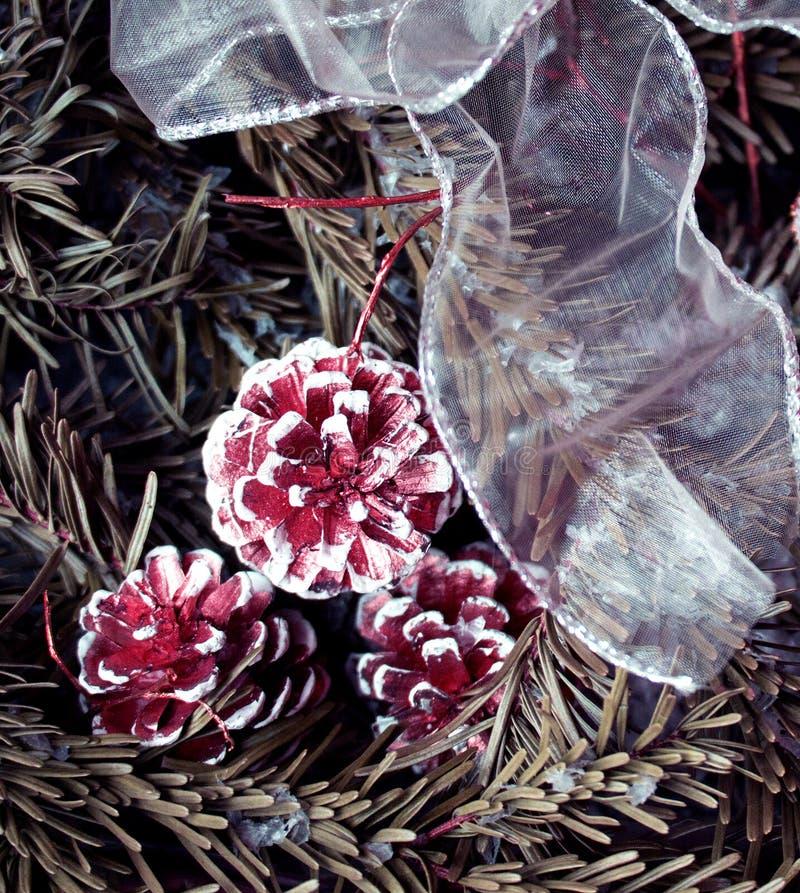 Sneeuwspar met sparappel en decoratie witte band De achtergrond van de winter stock afbeelding