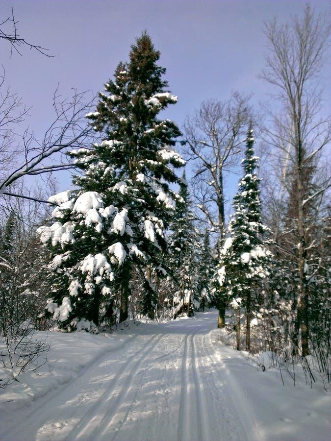 Sneeuwsporen royalty-vrije stock afbeelding