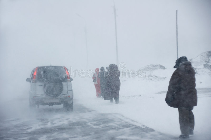 Sneeuwstorm royalty-vrije stock foto's