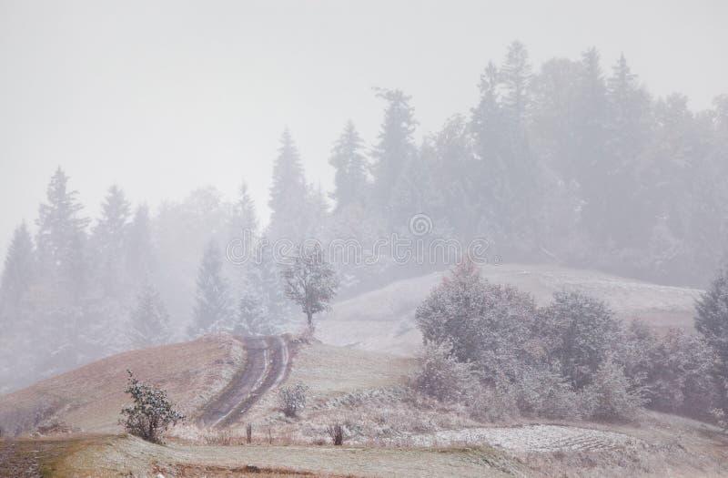 Sneeuwval in Bergen Verandering van seizoenen De winter komst Carpath royalty-vrije stock foto's