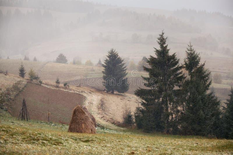 Sneeuwval in Bergen Verandering van seizoenen De winter komst Carpath stock afbeeldingen