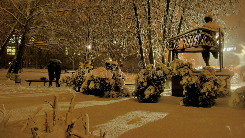 Sneeuwval in het park stock foto