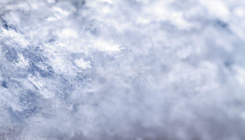 Sneeuwvlok in blauwe sneeuw stock foto's