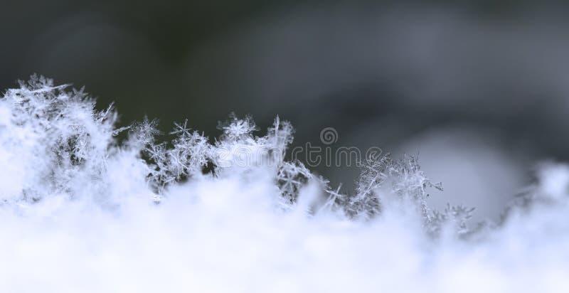 Sneeuwvlok in blauwe sneeuw royalty-vrije stock afbeeldingen