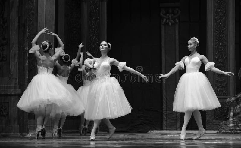 Sneeuwvlokfairy- het het suikergoedkoninkrijk van het tweede handelings tweede gebied - de Balletnotekraker royalty-vrije stock foto