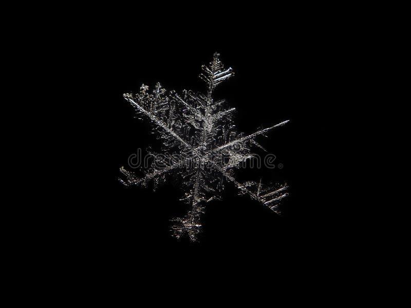 Sneeuwvlokmacro bij zwarte wordt geïsoleerd die stock fotografie