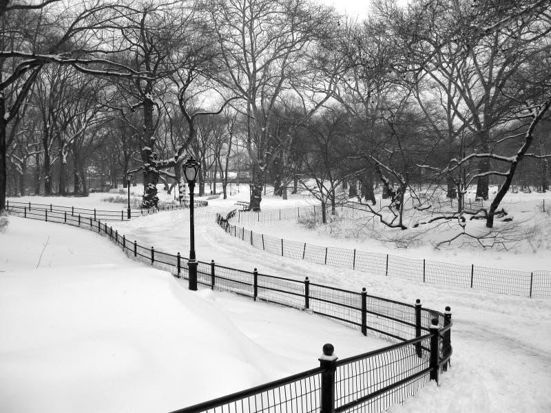 Sneeuwweg in Central Park, de Stad van New York royalty-vrije stock foto