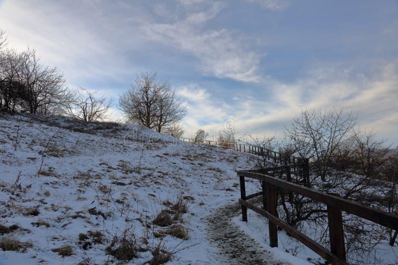 Sneeuwweg in de bergen stock afbeelding