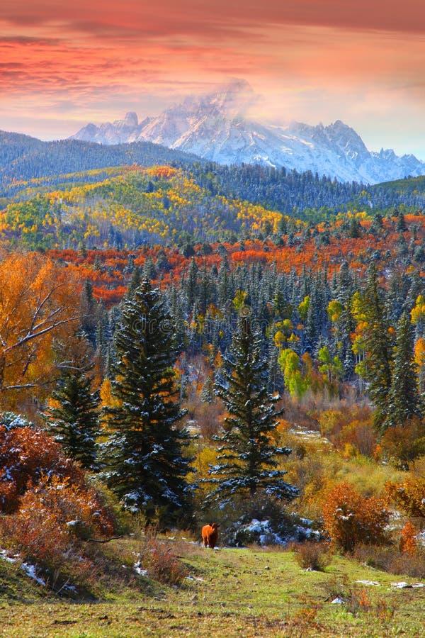 Sneffles góra w Kolorado zdjęcia royalty free