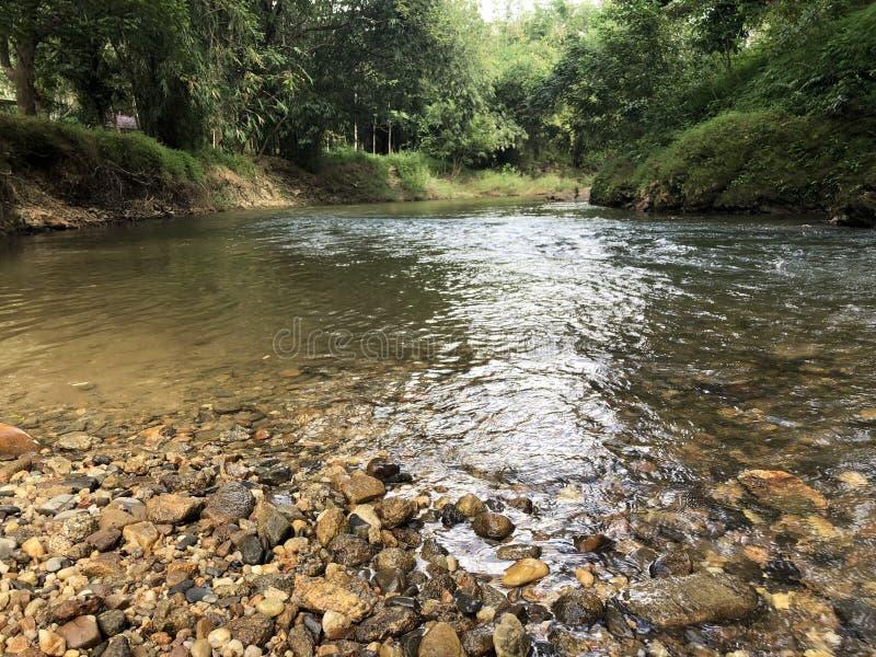 Snel lopende rivier in de wildernis met mooie stenen, duidelijk water en tropische vegetatie in Thailand in Phuket stock foto's
