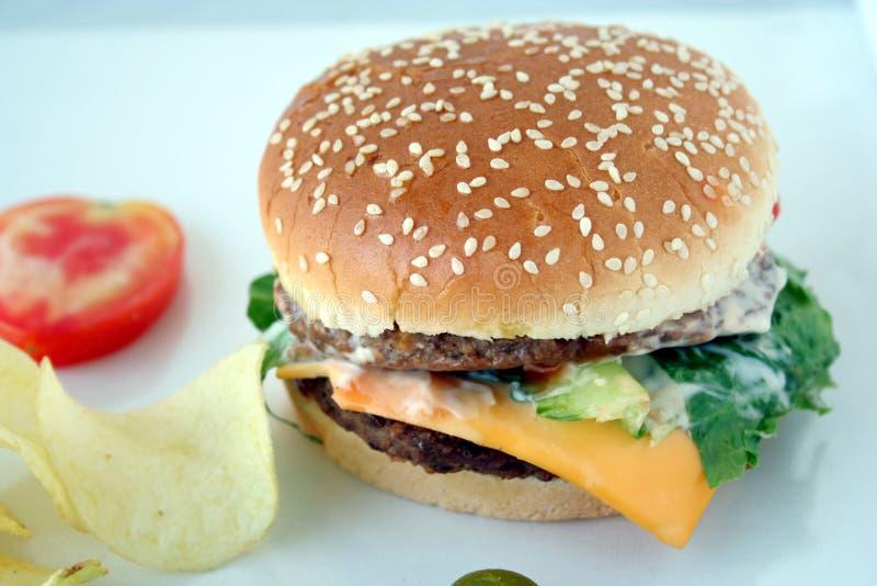 Snel voedsel royalty-vrije stock fotografie