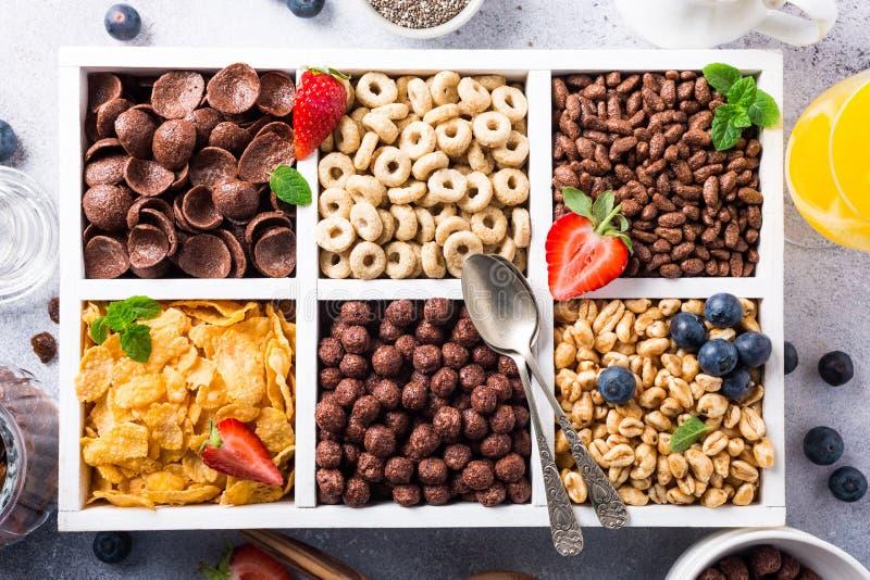 Snelle ontbijtgraangewassen royalty-vrije stock afbeeldingen
