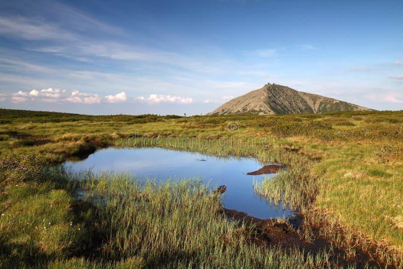 Snezka góra z torfowisko obraz stock