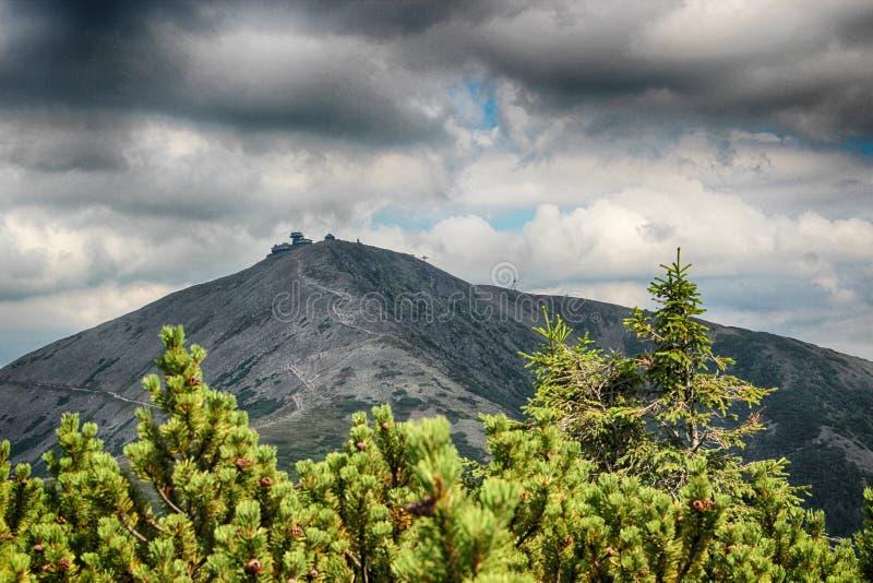 Snezka- giganta góry obrazy royalty free