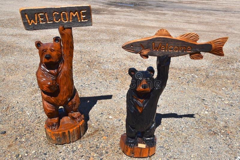 Snida för Chainsaw av flera björnar royaltyfria bilder