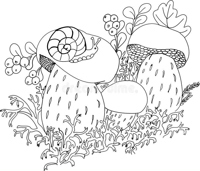 Snigel på stora champinjoner vektor illustrationer