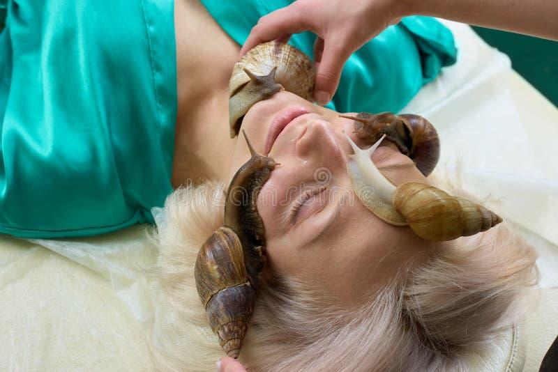 Sniglar på kvinnlig framsida i brunnsortsalong arkivfoton