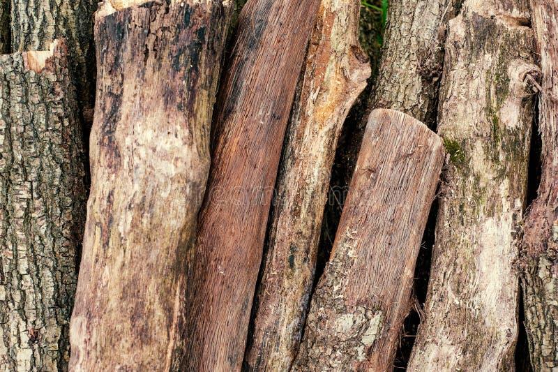 Snijd vers boomlogboeken op het groene gras omhoog worden opgestapeld dat stock foto's