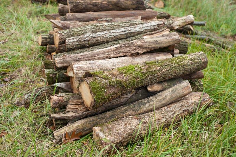 Snijd vers boomlogboeken op het groene gras omhoog worden opgestapeld dat stock foto
