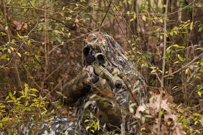 Download Sniper hiding in forest stock photo. Image of autumn - 109114320