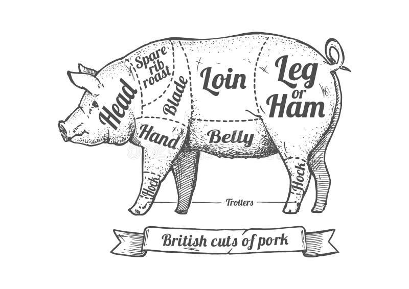 Snitt av griskött royaltyfri illustrationer