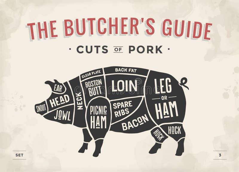 Snitt av köttuppsättningen Affischslaktarediagram, intrig och handbok - griskött Hand-dragit typografisk för tappning också vekto vektor illustrationer