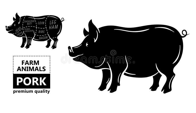 Snitt av köttuppsättningen Affischslaktarediagram, intrig och handbok - griskött Typografisk för tappning som hand-dras på en sva royaltyfri illustrationer