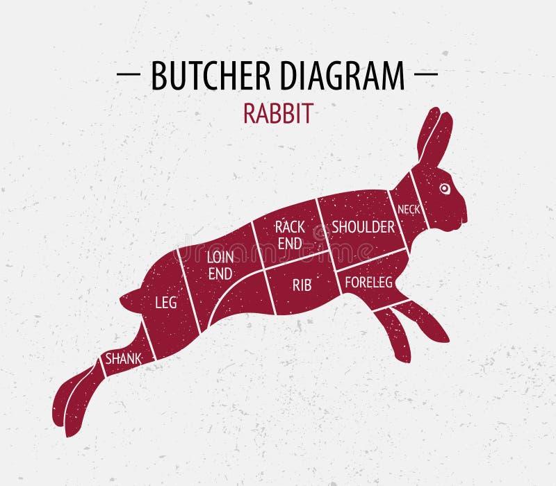 Snitt av kanin stock illustrationer