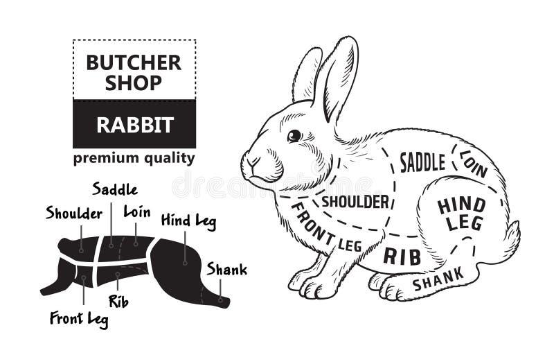 Snitt av kanin Affischslaktarediagrammet för livsmedel, köttdiversehandel, slaktare shoppar, bondemarknaden Kaninkontur vektor royaltyfri illustrationer