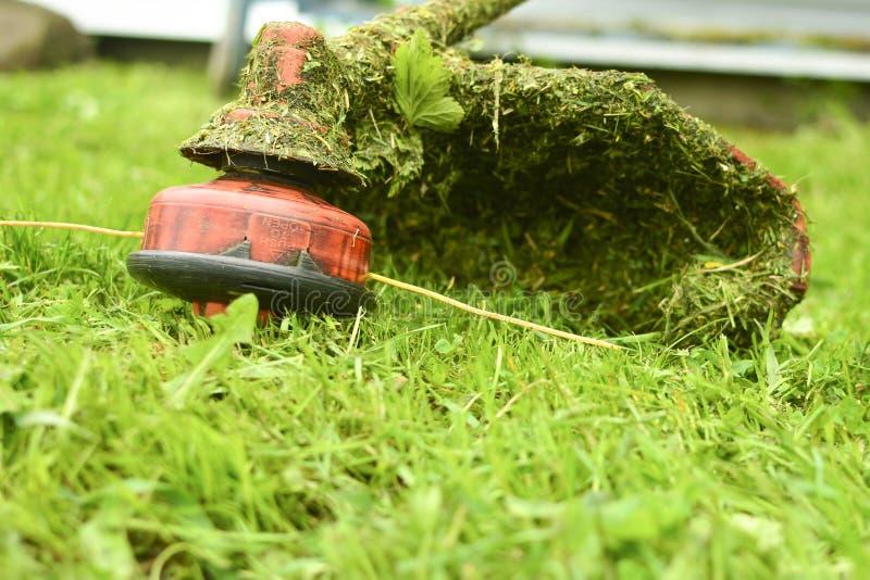 Snoeischaar dichte maait omhooggaand het gras met een grasmaaier Het tuinieren met een Close-up van de borstelsnijder Gazonzorg m stock fotografie