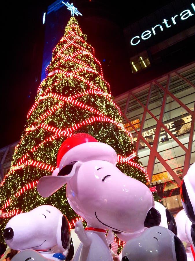 Snoopy felice fotografie stock