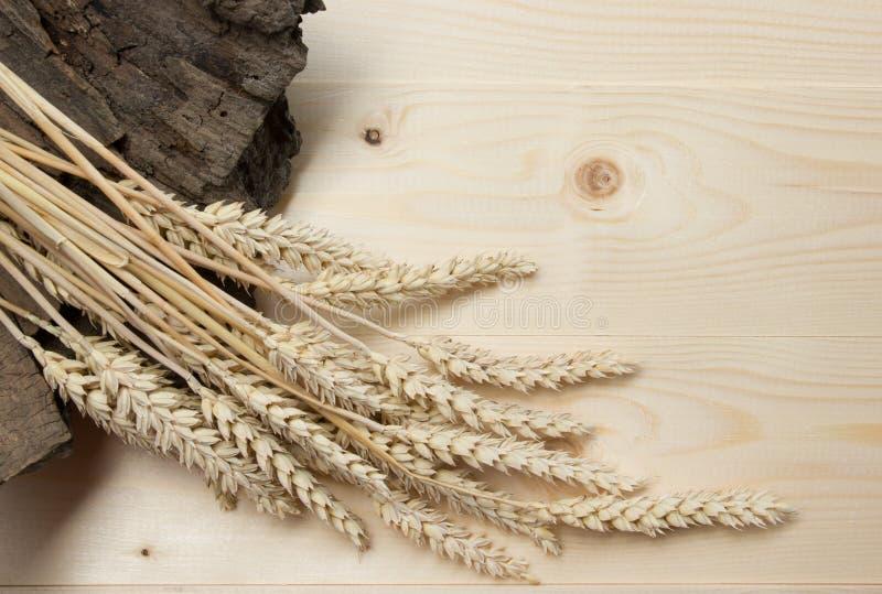 Snop banatka nad Drewnianym tłem Żniwa pojęcie Odgórny widok obrazy stock