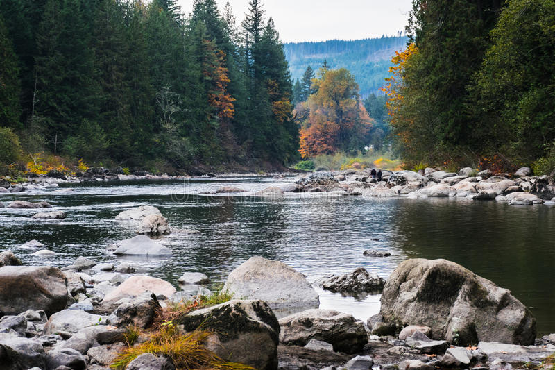 Snoqualmie flod, USA arkivfoto