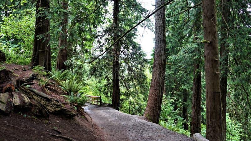 Snoqualmie tombe parc photos stock
